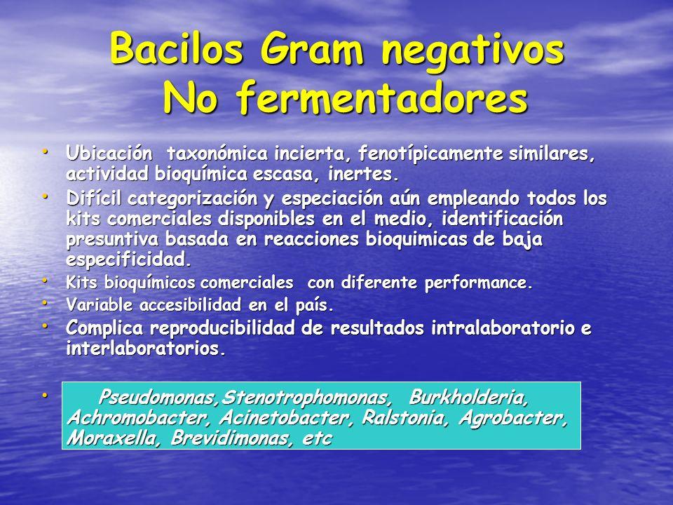 Bacilos Gram negativos No fermentadores Ubicación taxonómica incierta, fenotípicamente similares, actividad bioquímica escasa, inertes. Ubicación taxo