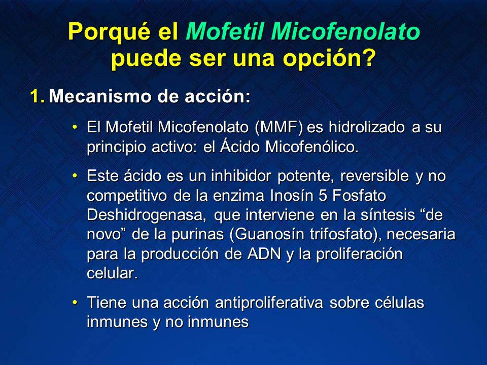 Porqué el Mofetil Micofenolato puede ser una opción? 1.Mecanismo de acción: El Mofetil Micofenolato (MMF) es hidrolizado a su principio activo: el Áci