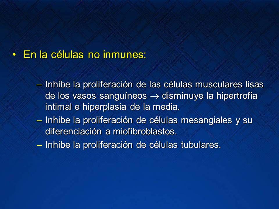Progresión de la Lesión Renal Mecanismos Inmunológicos Respuesta Inmune inapropiada Infiltración linfocitos/macrófagos Linfocitos T activación/proliferación Lesión intersticial Lesión glomerular Fibroblastos/Miofibroblastos Fibrosis Renal Proliferación de células mesangiales mesangiales Ang II TGF TGF Activación del complemento Citoquinas Moléculas de adhesión Factores de crecimiento Angiotensina II (Ang II)