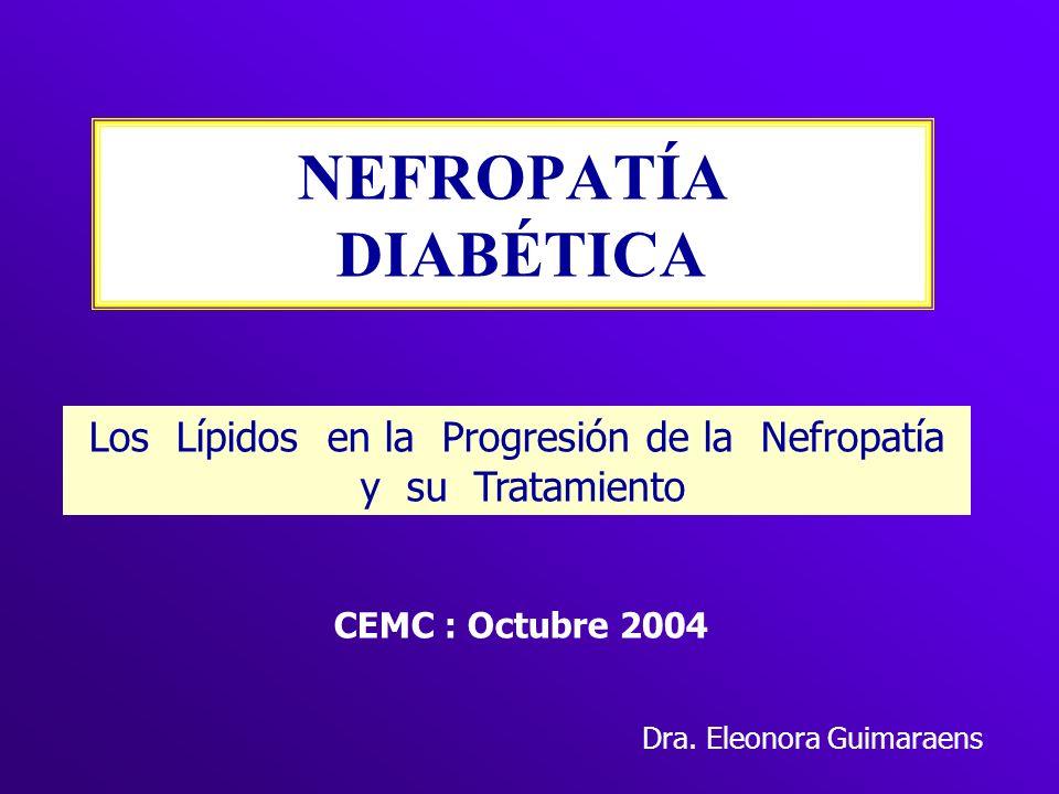 NEFROPATÍA DIABÉTICA Los Lípidos en la Progresión de la Nefropatía y su Tratamiento CEMC : Octubre 2004 Dra. Eleonora Guimaraens
