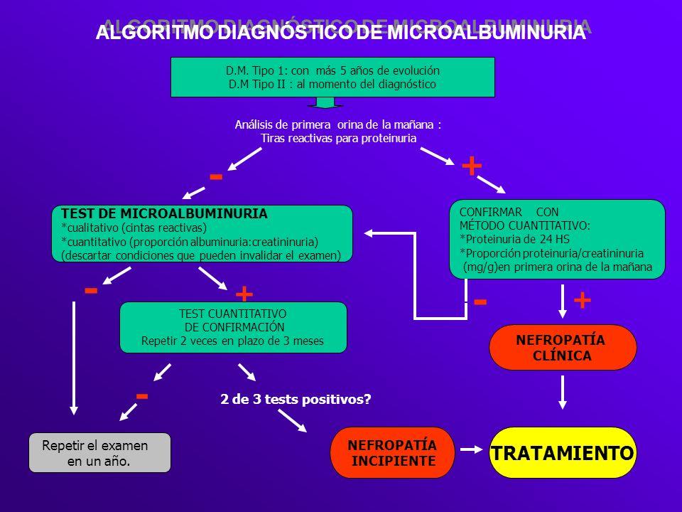 ALGORITMO DIAGNÓSTICO DE MICROALBUMINURIA D.M. Tipo 1: con más 5 años de evolución D.M Tipo II : al momento del diagnóstico CONFIRMAR CON MÉTODO CUANT
