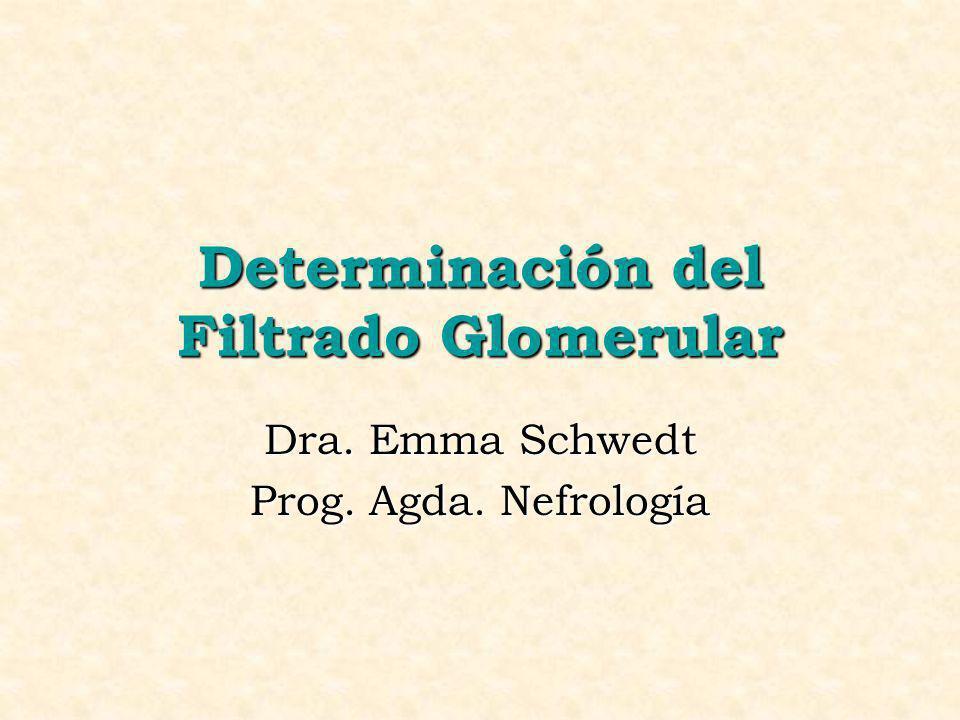 Determinación del Filtrado Glomerular Dra. Emma Schwedt Prog. Agda. Nefrología