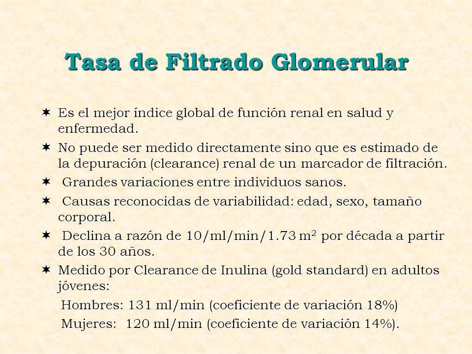 Tasa de Filtrado Glomerular ¬Es el mejor índice global de función renal en salud y enfermedad. ¬No puede ser medido directamente sino que es estimado