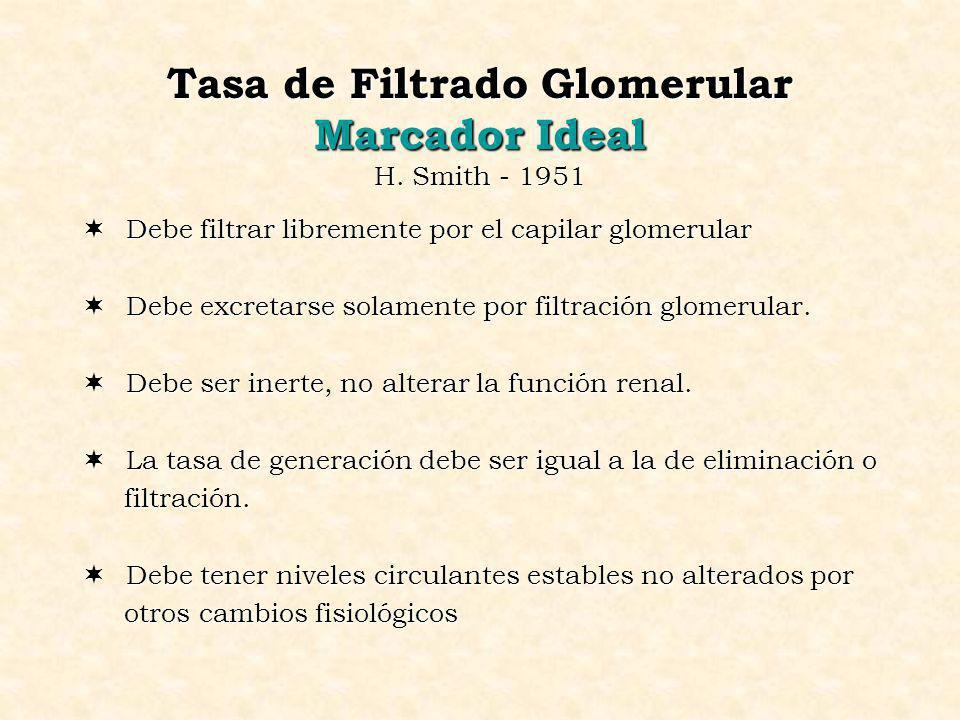Tasa de Filtrado Glomerular Marcador Ideal H. Smith - 1951 ¬ Debe filtrar libremente por el capilar glomerular ¬ Debe excretarse solamente por filtrac