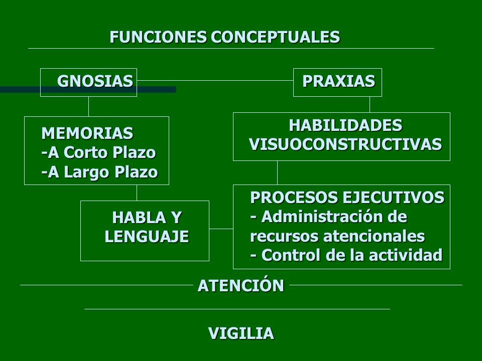 VIGILIA ATENCIÓN PROCESOS EJECUTIVOS - Administración de recursos atencionales - Control de la actividad HABLA Y LENGUAJE MEMORIAS -A Corto Plazo -A L