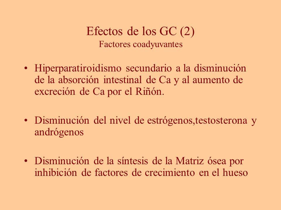 Efectos de los GC (2) Factores coadyuvantes Hiperparatiroidismo secundario a la disminución de la absorción intestinal de Ca y al aumento de excreción
