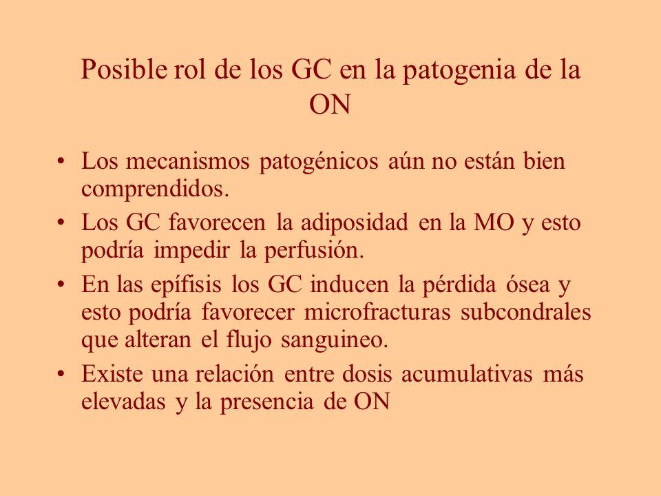 Posible rol de los GC en la patogenia de la ON Los mecanismos patogénicos aún no están bien comprendidos. Los GC favorecen la adiposidad en la MO y es