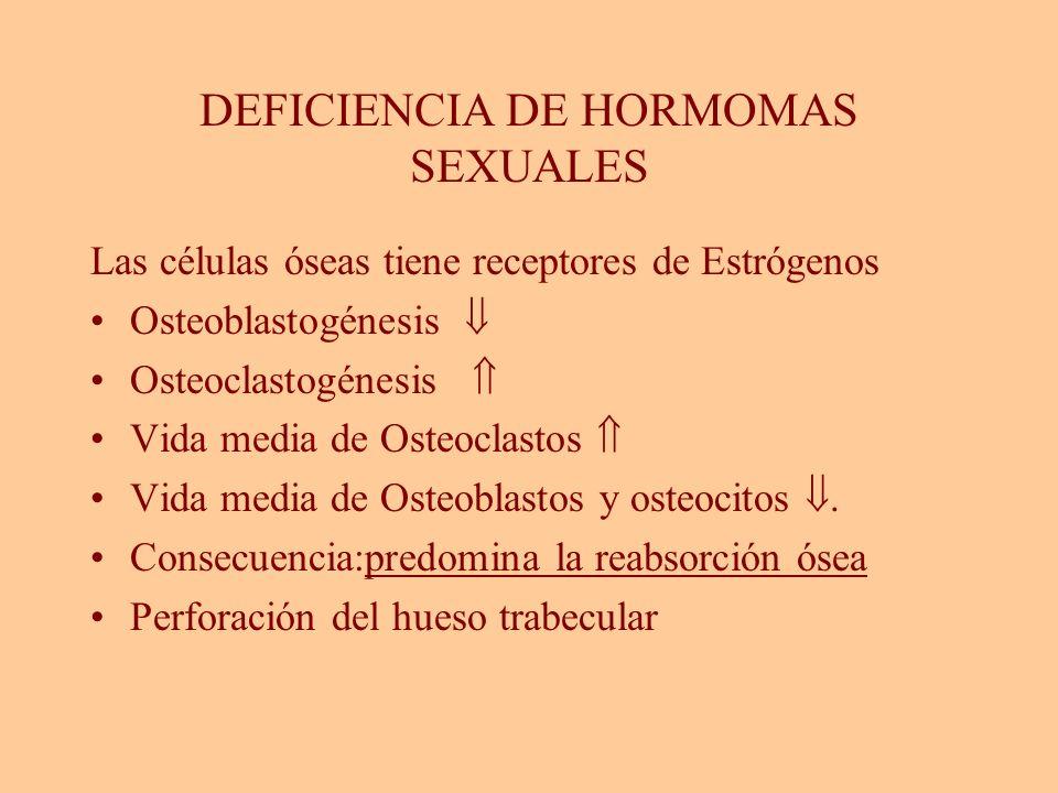 Efecto de la Edad Independiente del (+) de hormonas sexuales Disminución de la Osteoblastogénesis Disminución de la Osteoclastogénesis Disminución de la vida media del Osteocito Aumento de adipocitos en la Médula ósea Consecuencia: osteopenia Manolagas,S Endocrine Reviews 21 115-137,2000