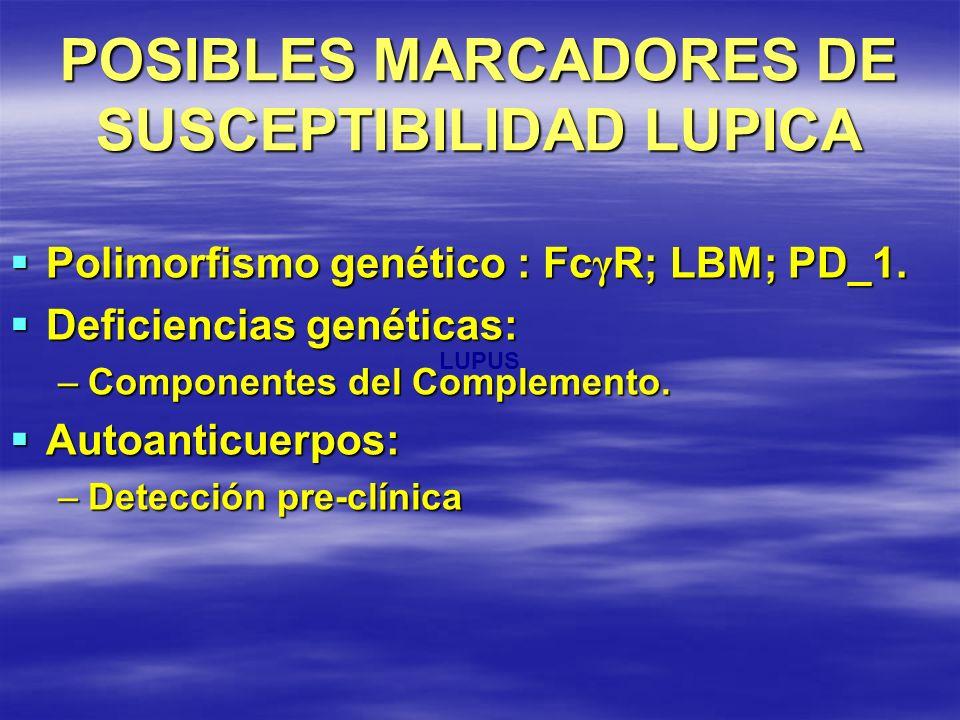 POSIBLES MARCADORES DE SUSCEPTIBILIDAD LUPICA Polimorfismo genético : Fc γ R; LBM; PD_1. Polimorfismo genético : Fc γ R; LBM; PD_1. Deficiencias genét