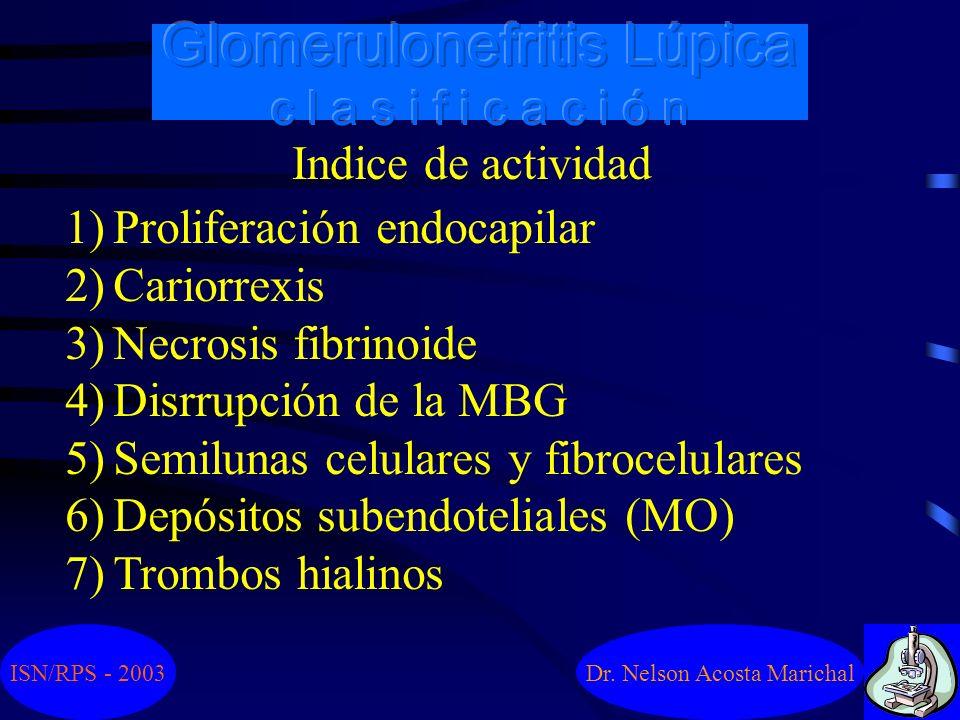 Dr. Nelson Acosta Marichal Clase VI - GNL esclerosante, = o > 90% ISN/RPS - 2003