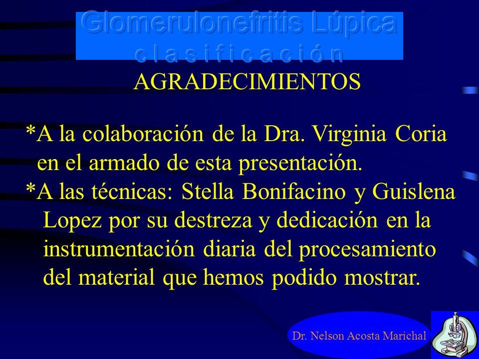 Dr. Nelson Acosta Marichal Recomendaciones para un completo informe: 6) Finalmente se destaca que la biopsia renal no debe ser utilizada con el fin de