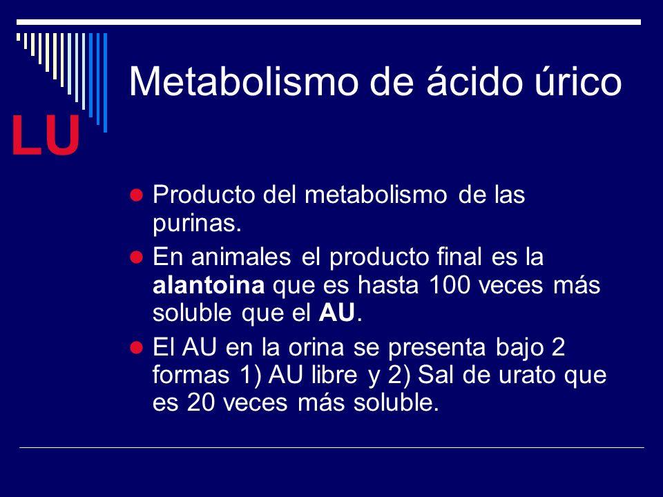 acido urico por medicamentos infusiones para combatir la gota remedios para disminuir la gota