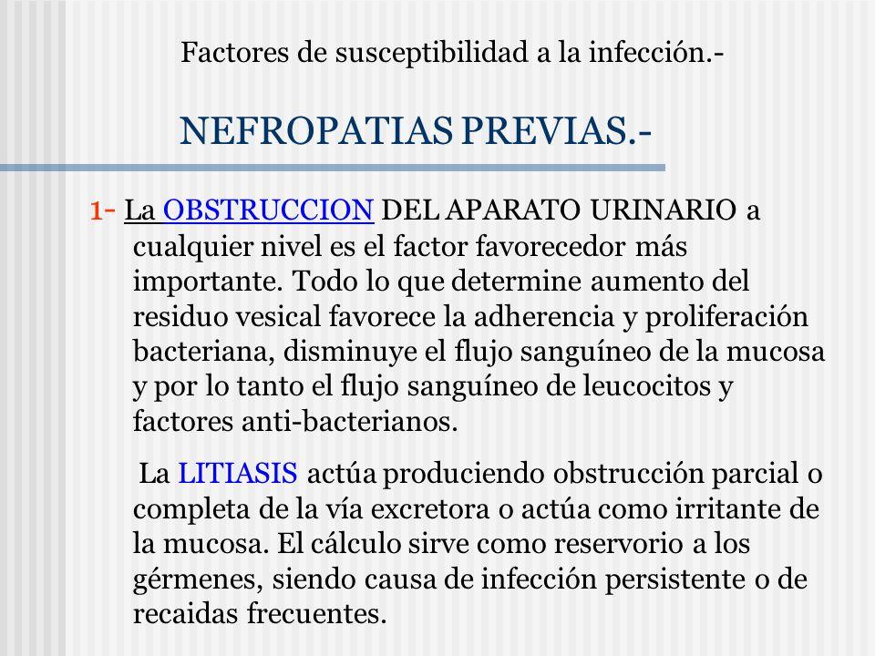 Factores de susceptibilidad a la infección.- NEFROPATIAS PREVIAS.- 1- La OBSTRUCCION DEL APARATO URINARIO a cualquier nivel es el factor favorecedor m