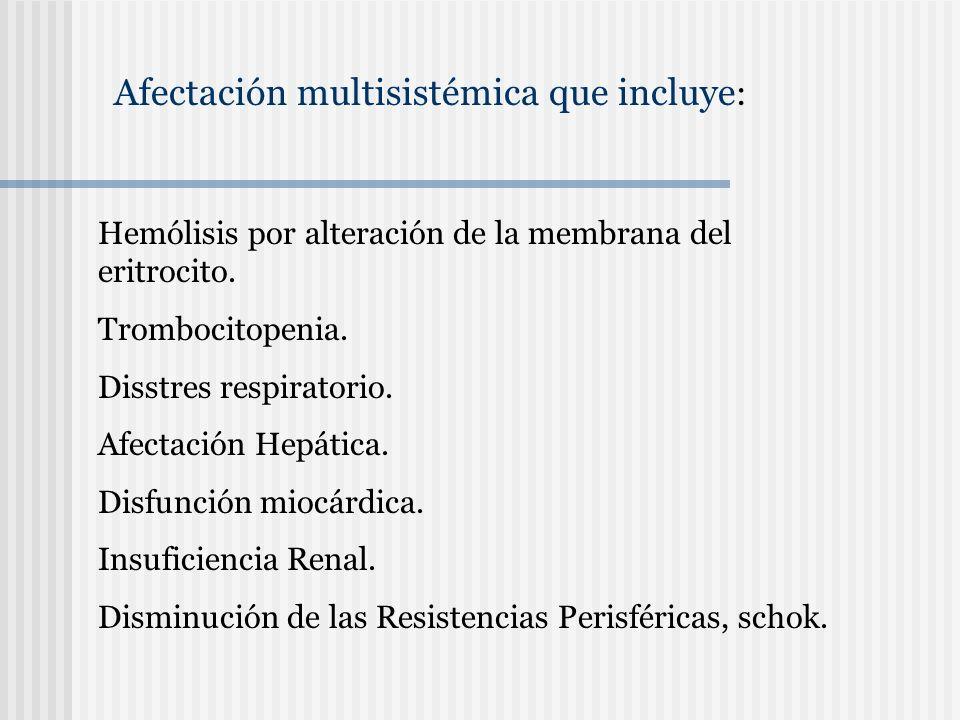 Afectación multisistémica que incluye : Hemólisis por alteración de la membrana del eritrocito. Trombocitopenia. Disstres respiratorio. Afectación Hep