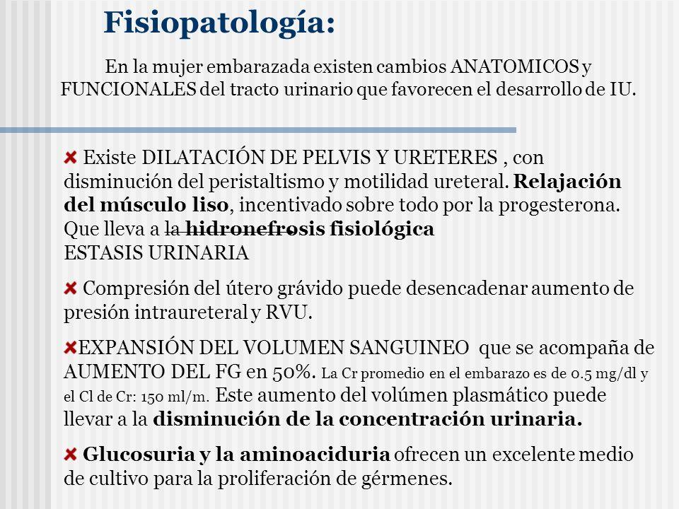 BACTERIURIA ASINTOMATICA.- ATB según sensibilidad Puede utilizarse Ampicilina/Amoxicilina (con inhibidores de betalactamasas) Cefalosporinas de 1ª generación Eritromicina Nitrofurantoina (no en 3er.