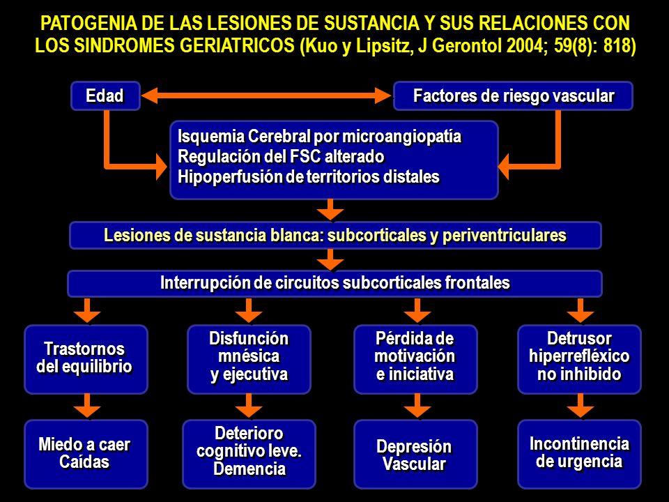 Detrusor hiperrefléxico no inhibido Detrusor hiperrefléxico no inhibido PATOGENIA DE LAS LESIONES DE SUSTANCIA Y SUS RELACIONES CON LOS SINDROMES GERIATRICOS (Kuo y Lipsitz, J Gerontol 2004; 59(8): 818) PATOGENIA DE LAS LESIONES DE SUSTANCIA Y SUS RELACIONES CON LOS SINDROMES GERIATRICOS (Kuo y Lipsitz, J Gerontol 2004; 59(8): 818) Isquemia Cerebral por microangiopatía Regulación del FSC alterado Hipoperfusión de territorios distales Isquemia Cerebral por microangiopatía Regulación del FSC alterado Hipoperfusión de territorios distales Lesiones de sustancia blanca: subcorticales y periventriculares Interrupción de circuitos subcorticales frontales Edad Factores de riesgo vascular Trastornos del equilibrio Trastornos del equilibrio Disfunción mnésica y ejecutiva Disfunción mnésica y ejecutiva Pérdida de motivación e iniciativa Pérdida de motivación e iniciativa Miedo a caer Caídas Miedo a caer Caídas Deterioro cognitivo leve.