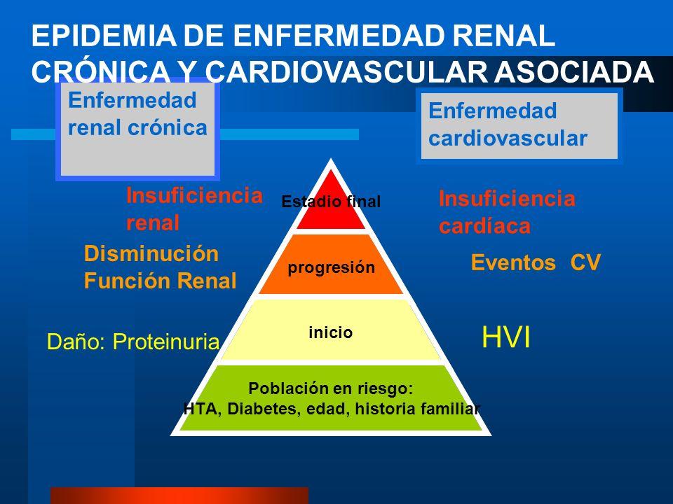 Enfermedad renal crónica Enfermedad cardiovascular Insuficiencia cardíaca Insuficiencia renal Daño: Proteinuria Disminución Función Renal HVI Eventos CV EPIDEMIA DE ENFERMEDAD RENAL CRÓNICA Y CARDIOVASCULAR ASOCIADA