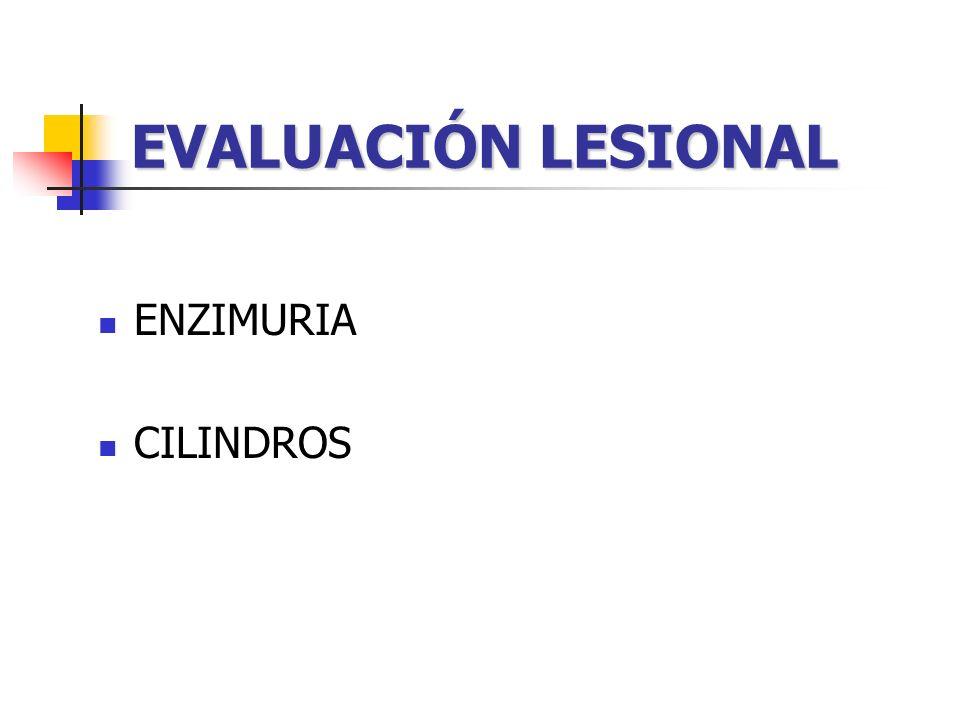 DETERMINACIONES Osmolalidad urinaria, plasmática Osmolalidad urinaria, plasmática.
