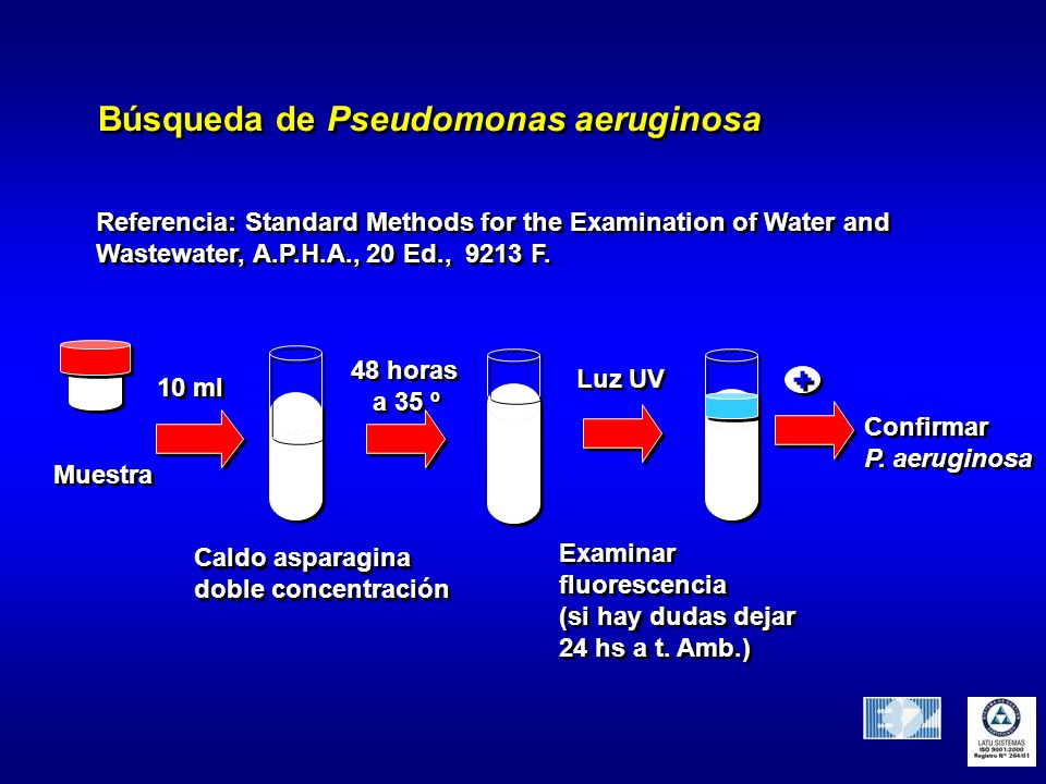 Búsqueda de Pseudomonas aeruginosa Referencia: Standard Methods for the Examination of Water and Wastewater, A.P.H.A., 20 Ed., 9213 F. Referencia: Sta