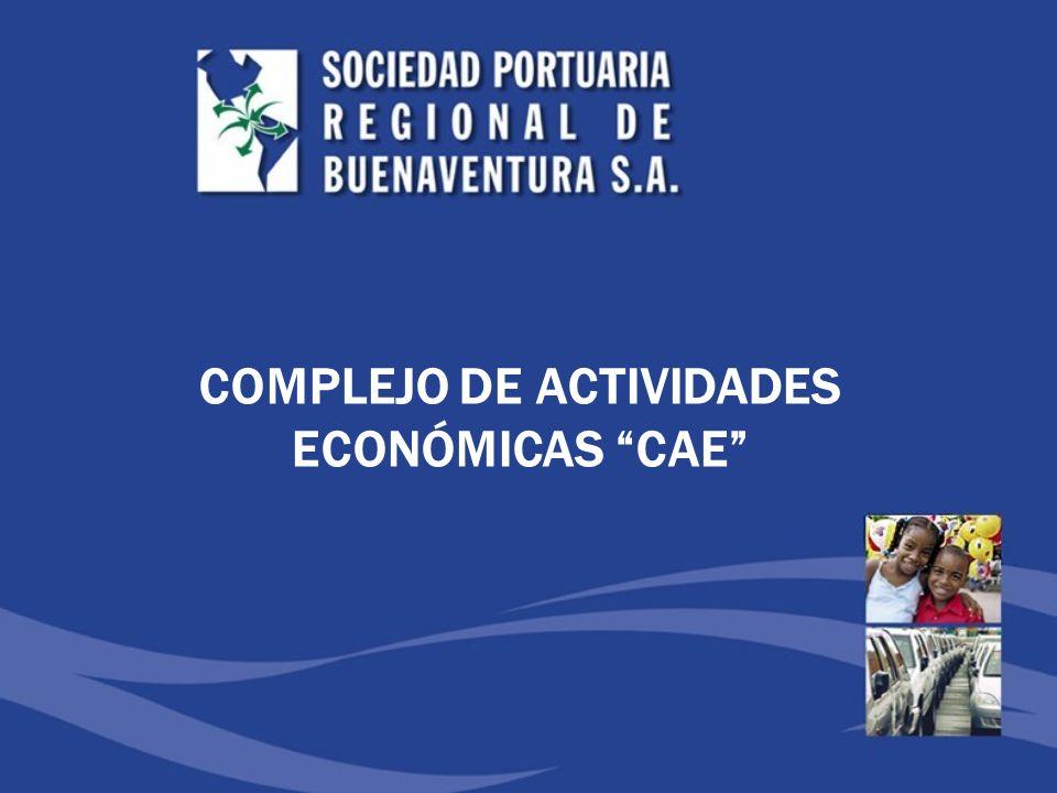 COMPLEJO DE ACTIVIDADES ECONÓMICAS CAE