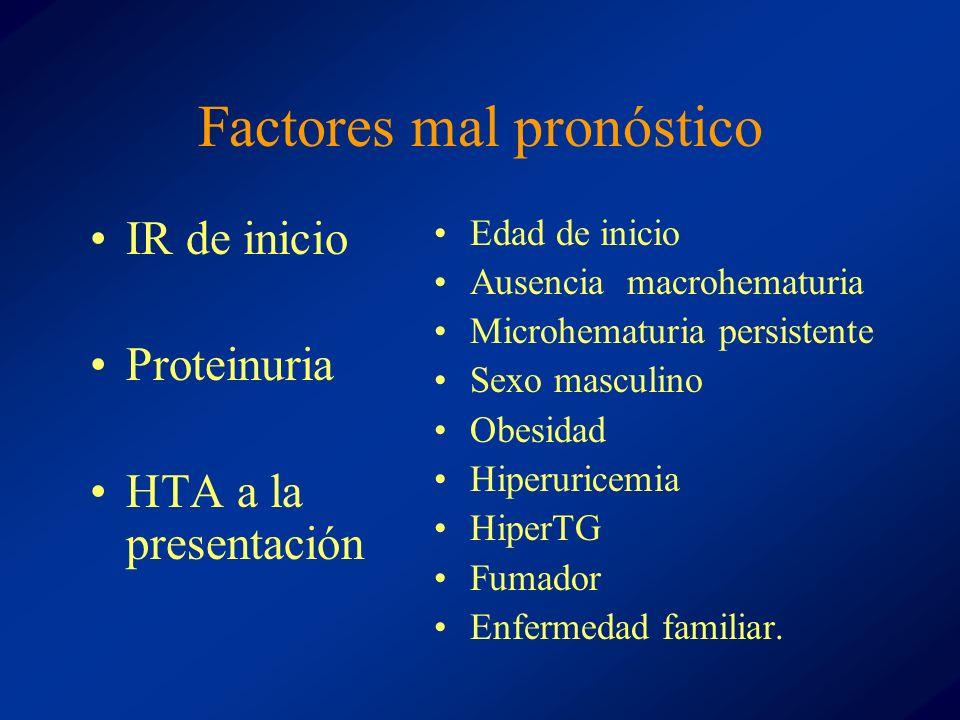 Factores mal pronóstico IR de inicio Proteinuria HTA a la presentación Edad de inicio Ausencia macrohematuria Microhematuria persistente Sexo masculin