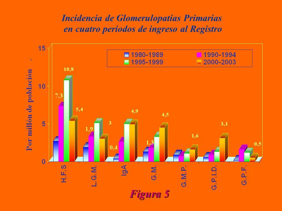 Incidencia de Glomerulopatías Primarias en cuatro períodos de ingreso al Registro Figura 5