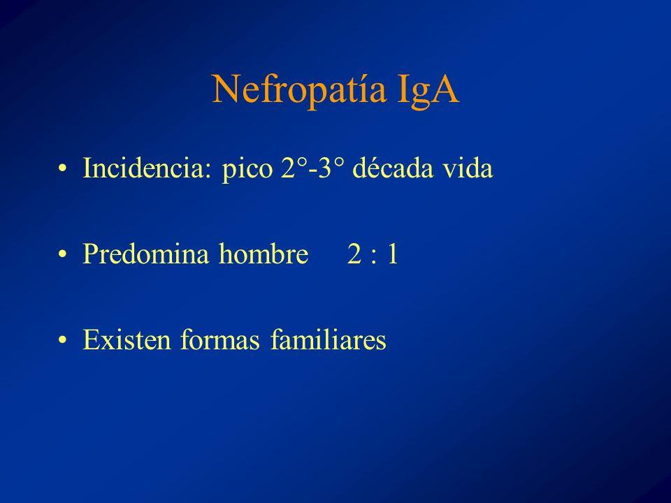 Nefropatía IgA Incidencia: pico 2°-3° década vida Predomina hombre 2 : 1 Existen formas familiares