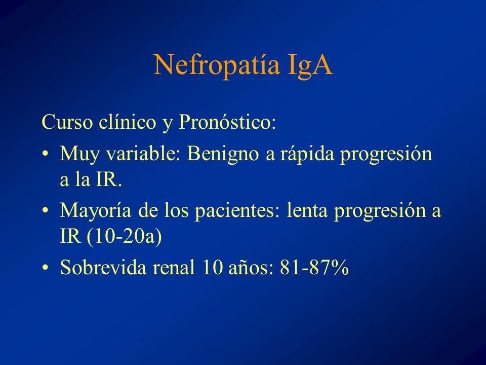 Nefropatía IgA Curso clínico y Pronóstico: Muy variable: Benigno a rápida progresión a la IR. Mayoría de los pacientes: lenta progresión a IR (10-20a)