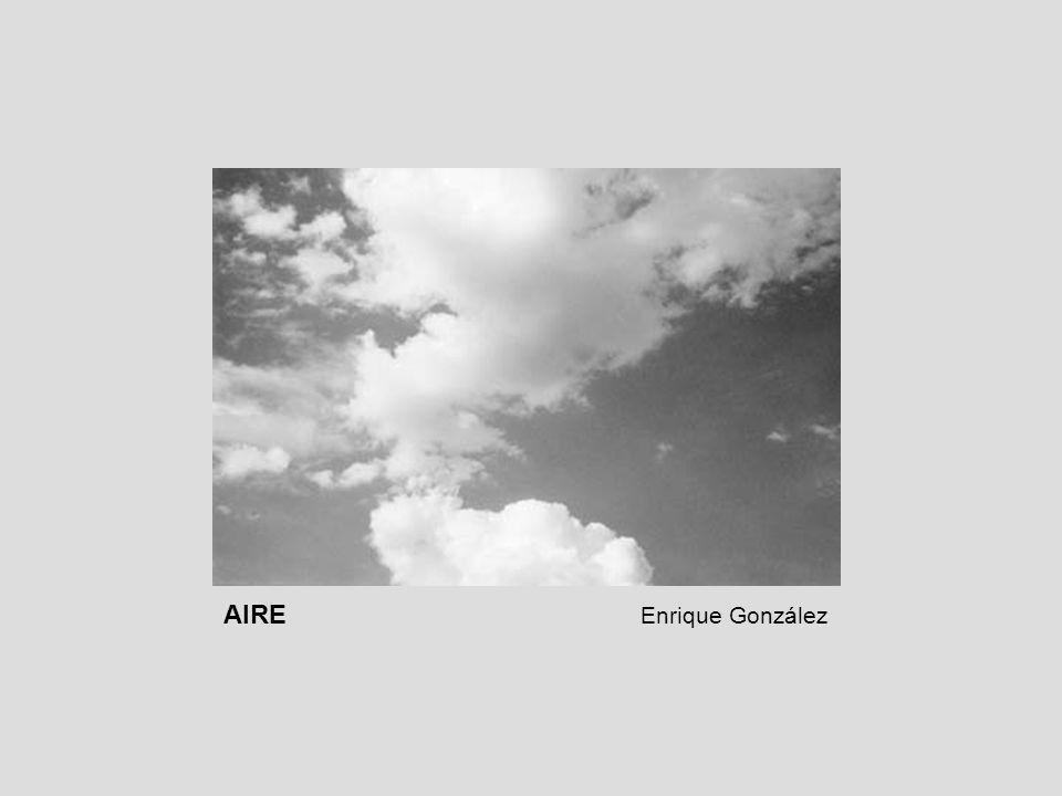 AIRE Enrique González