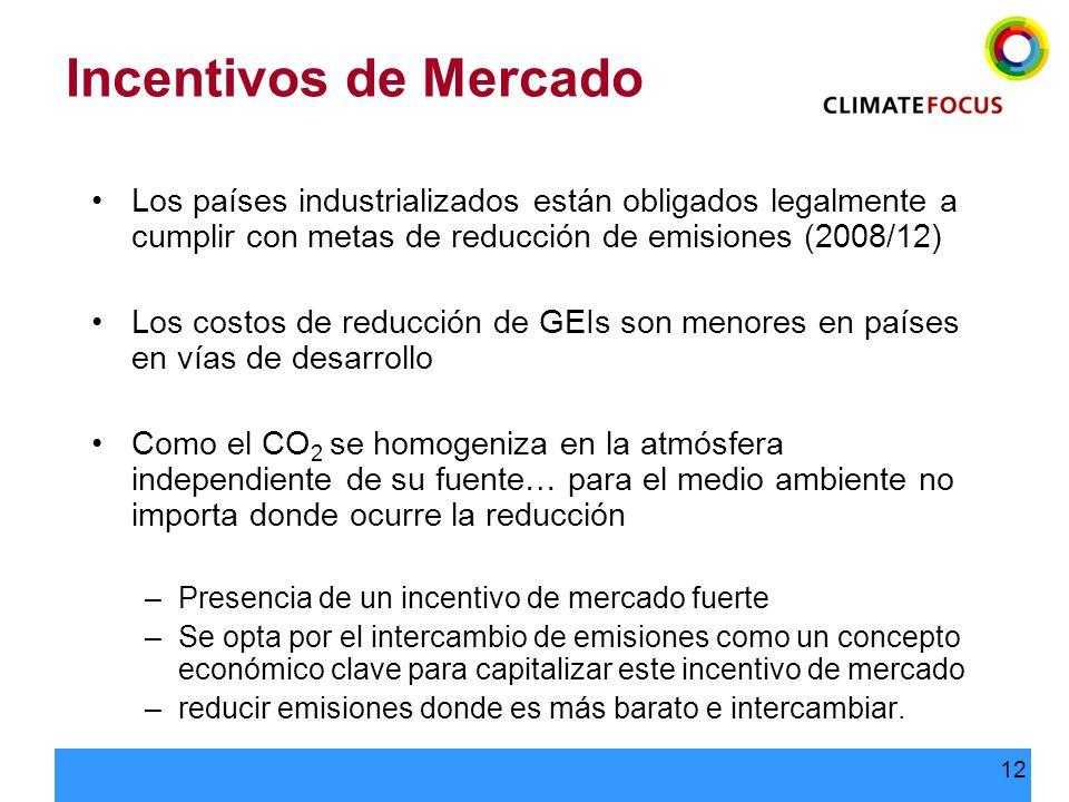 12 Incentivos de Mercado Los países industrializados están obligados legalmente a cumplir con metas de reducción de emisiones (2008/12) Los costos de