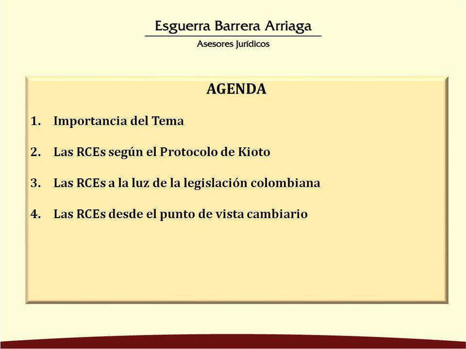 AGENDA 1.Importancia del Tema 2.Las RCEs según el Protocolo de Kioto 3.Las RCEs a la luz de la legislación colombiana 4.Las RCEs desde el punto de vista cambiario