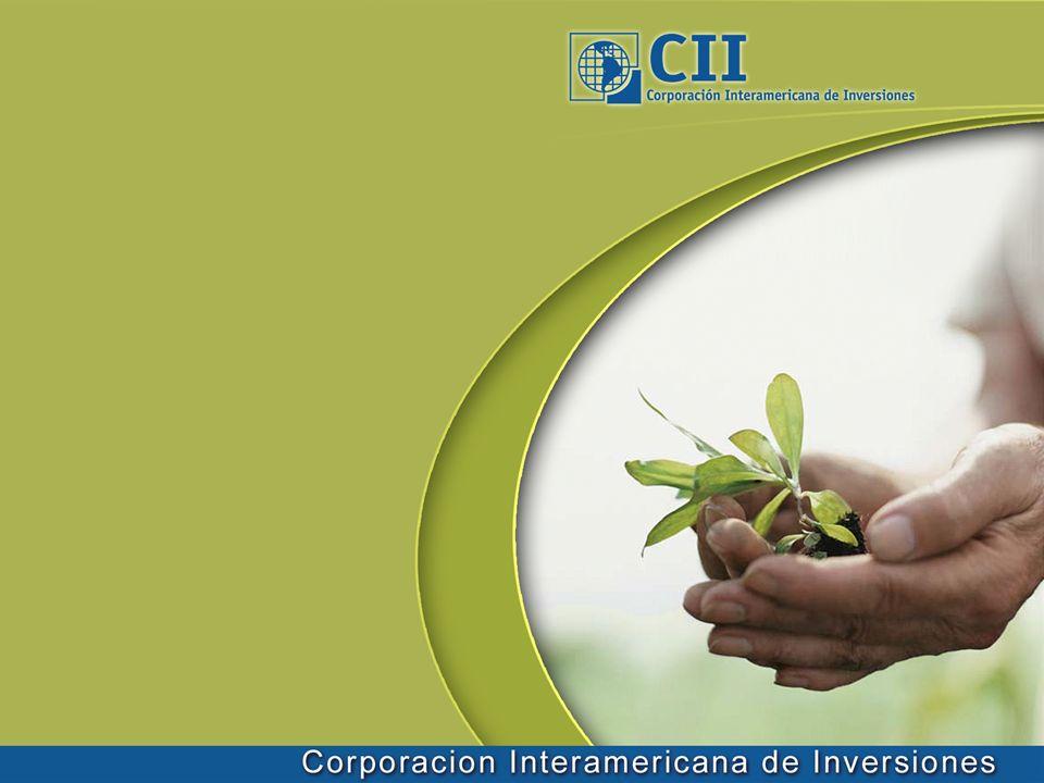 Perspectivas Evolución de las reglas del mercado (Proceso Bali) Impacto posible US-ETS y rol de China, India, Brasil y México Relación entre cambio climático y libre comercio Incremento del fondeo global Involucramiento de la banca local Innovación financiera y estandarización