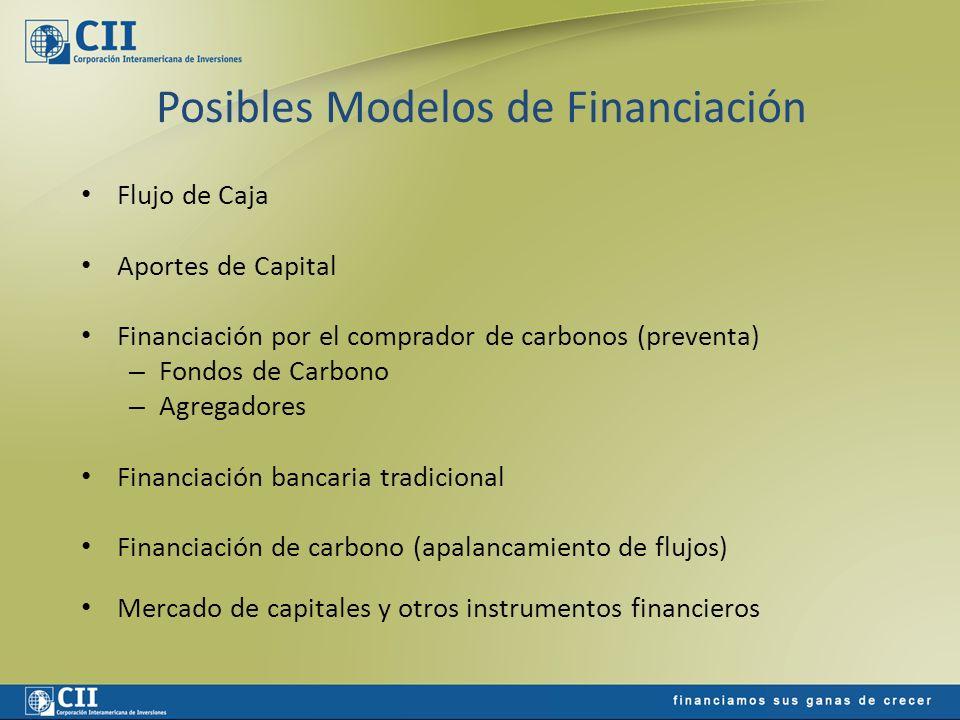 Posibles Modelos de Financiación Flujo de Caja Aportes de Capital Financiación por el comprador de carbonos (preventa) – Fondos de Carbono – Agregador