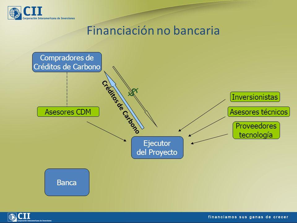 Financiación no bancaria Ejecutor del Proyecto Banca Compradores de Créditos de Carbono $ Inversionistas Asesores técnicos Proveedores tecnología Ases