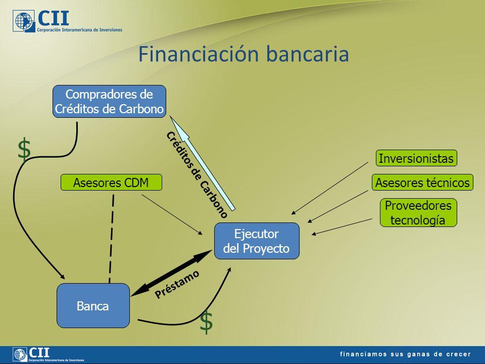 Financiación bancaria Ejecutor del Proyecto Banca Compradores de Créditos de Carbono Inversionistas Asesores técnicos Proveedores tecnología Asesores