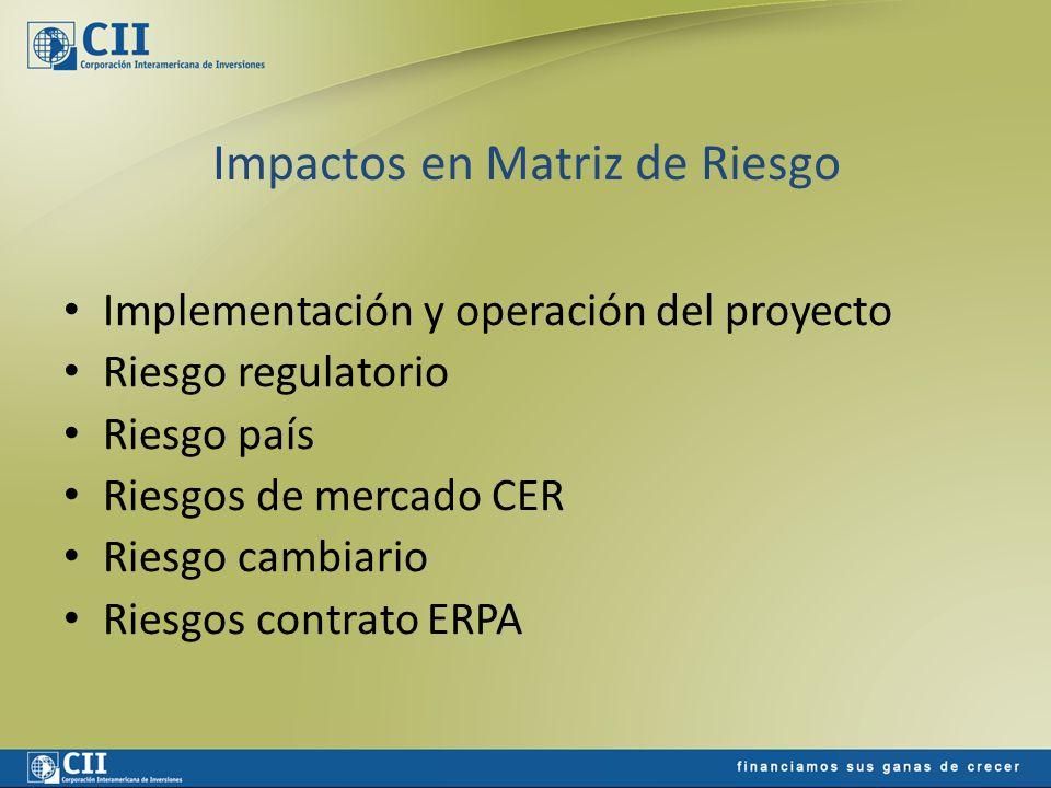 Impactos en Matriz de Riesgo Implementación y operación del proyecto Riesgo regulatorio Riesgo país Riesgos de mercado CER Riesgo cambiario Riesgos co