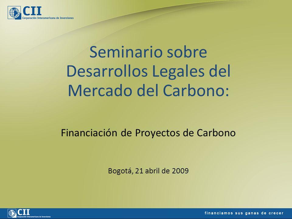 Posibles Modelos de Financiación Flujo de Caja Aportes de Capital Financiación por el comprador de carbonos (preventa) – Fondos de Carbono – Agregadores Financiación bancaria tradicional Financiación de carbono (apalancamiento de flujos) Mercado de capitales y otros instrumentos financieros