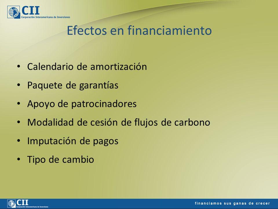 Efectos en financiamiento Calendario de amortización Paquete de garantías Apoyo de patrocinadores Modalidad de cesión de flujos de carbono Imputación