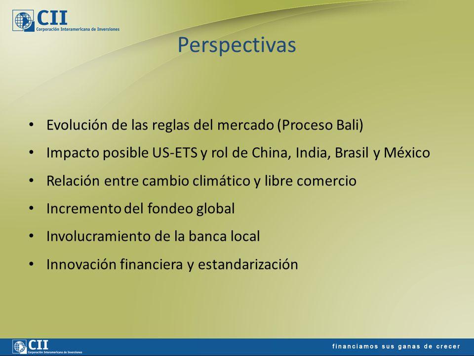 Perspectivas Evolución de las reglas del mercado (Proceso Bali) Impacto posible US-ETS y rol de China, India, Brasil y México Relación entre cambio cl