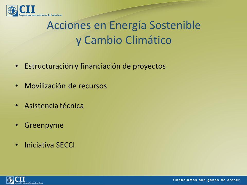 Acciones en Energía Sostenible y Cambio Climático Estructuración y financiación de proyectos Movilización de recursos Asistencia técnica Greenpyme Ini