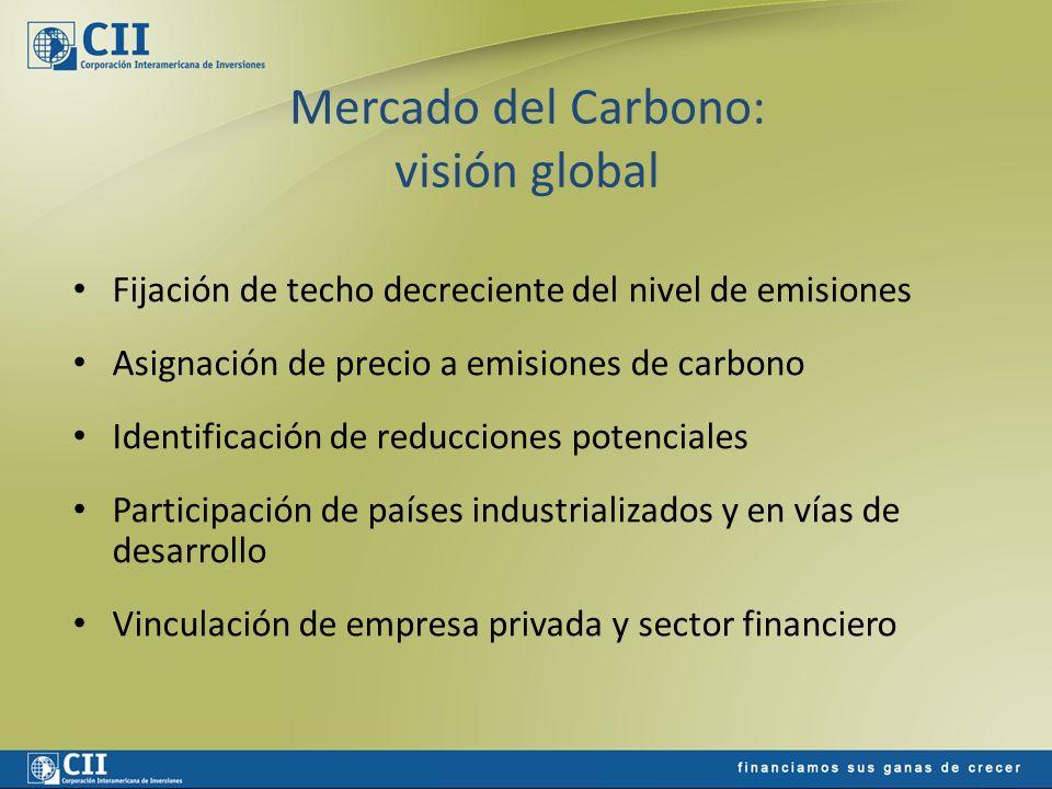 Mercado del Carbono: motivación de las partes COMPRADOR Reducción costo cumplimiento Imagen corporativa ------------------------------------------------- Exportación de tecnología Escudo tributario Apoyo al desarrollo VENDEDOR Nuevo producto exportable Mejora tasa interna de retorno Apalanca capital y financiamiento Mejora calidad crediticia Acceso a tecnología Acceso a divisas Ingreso a mercados nicho
