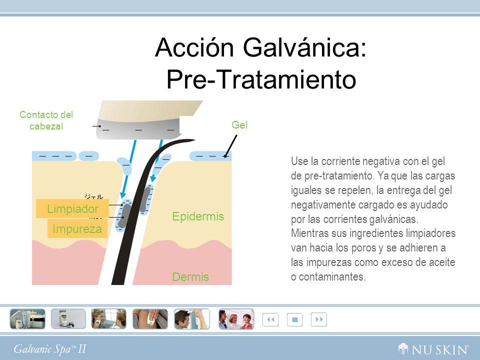 Contacto del cabezal Gel Epidermis Dermis Impureza Limpiador Acción Galvánica: Pre-Tratamiento Use la corriente negativa con el gel de pre-tratamiento