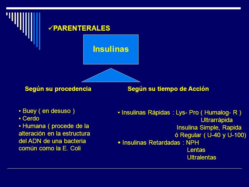 Insulinas PARENTERALES Según su procedencia Según su tiempo de Acción Buey ( en desuso ) Cerdo Humana ( procede de la alteración en la estructura del