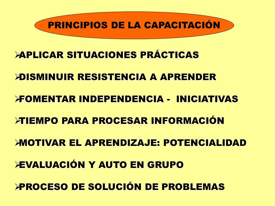 PRINCIPIOS DE LA CAPACITACIÓN APLICAR SITUACIONES PRÁCTICAS APLICAR SITUACIONES PRÁCTICAS DISMINUIR RESISTENCIA A APRENDER DISMINUIR RESISTENCIA A APR