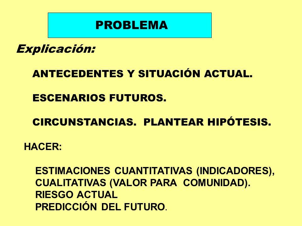 PROBLEMA Explicación: ANTECEDENTES Y SITUACIÓN ACTUAL. ESCENARIOS FUTUROS. CIRCUNSTANCIAS. PLANTEAR HIPÓTESIS. HACER: ESTIMACIONES CUANTITATIVAS (INDI