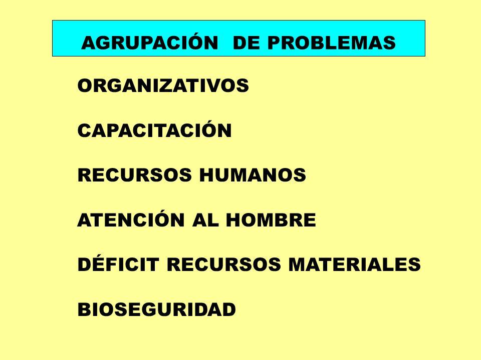 ORGANIZATIVOS CAPACITACIÓN RECURSOS HUMANOS ATENCIÓN AL HOMBRE DÉFICIT RECURSOS MATERIALES BIOSEGURIDAD AGRUPACIÓN DE PROBLEMAS