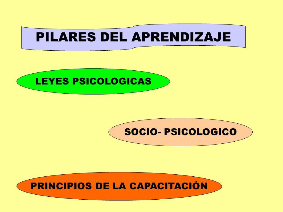 PILARES DEL APRENDIZAJE LEYES PSICOLOGICAS SOCIO- PSICOLOGICO PRINCIPIOS DE LA CAPACITACIÓN