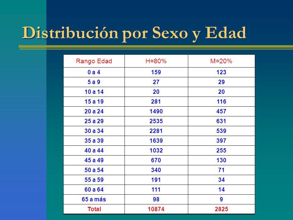 Distribución por Sexo y Edad Rango EdadH=80%M=20% 0 a 4159123 5 a 92729 10 a 1420 15 a 19281116 20 a 241490457 25 a 292535631 30 a 342281539 35 a 3916