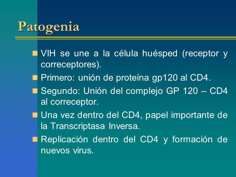 Patogenia VIH se une a la célula huésped (receptor y correceptores). Primero: unión de proteína gp120 al CD4. Segundo: Unión del complejo GP 120 – CD4