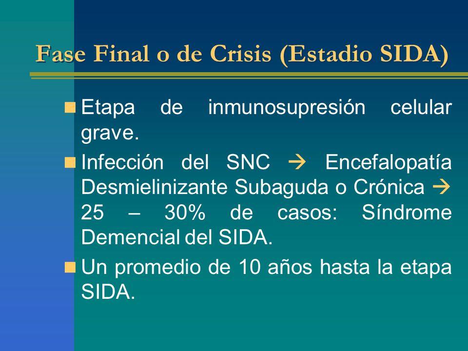 Fase Final o de Crisis (Estadio SIDA) Etapa de inmunosupresión celular grave. Infección del SNC Encefalopatía Desmielinizante Subaguda o Crónica 25 –